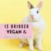 briogeo vegan